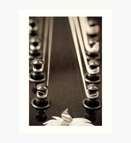 Mandolin Headstock Art Print