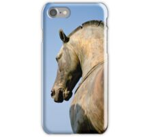 Bronze Horse, San Marco iPhone Case/Skin
