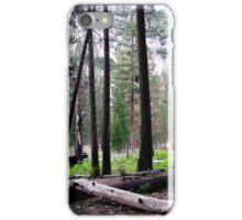 Woodland Vista--Kings Canyon iPhone Case/Skin