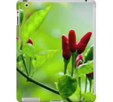 Bird's Eye Hot Chilli Love  iPad Case/Skin