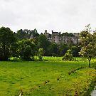 Lismore Castle by Declan Carr