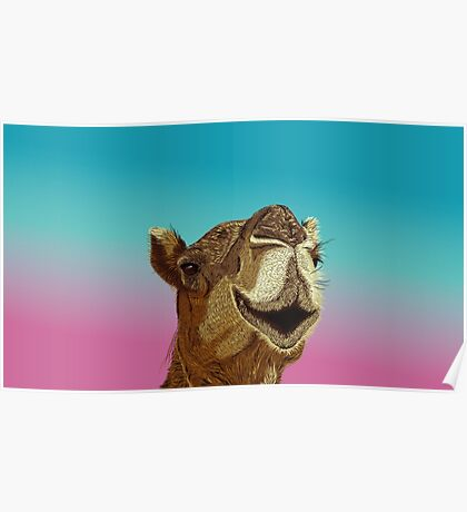Smiling Camel Poster
