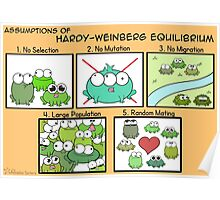 Assumptions of Hardy-Weinberg Equilibrium Poster