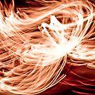 Amber Waves by Liz Grandmaison