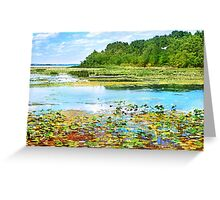 Summer on the Marsh Greeting Card