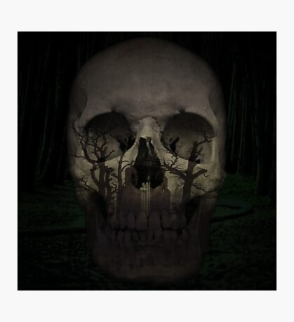 Desolate mind - Skull Collection Photographic Print
