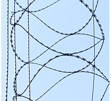 Barby Wire by Stephen Frost