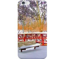RainbowConfetti Early Snow iPhone Case/Skin