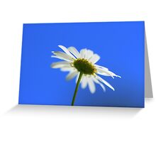 Flora - Summertime Blues Greeting Card