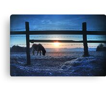 Under The Wire Canvas Print
