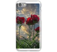 Tall Poppies iPhone Case/Skin