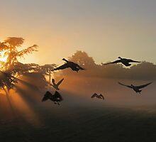 Scramble at Dawn by kelvinLemur