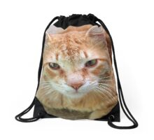 Ginger Tom Cat Portrait Drawstring Bag