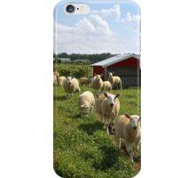 Sheep Farm iPhone Case/Skin