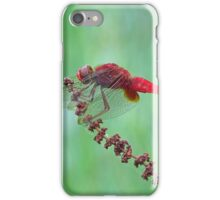 Reticulated Red at Rest iPhone Case/Skin