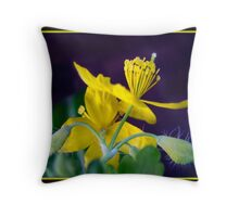 Even the flowers of weeds can be beautiful ! Throw Pillow