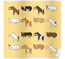 Lazy Bull Terrier - Yellow Poster