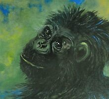 Portrait of Fifi by Cathy Gilday