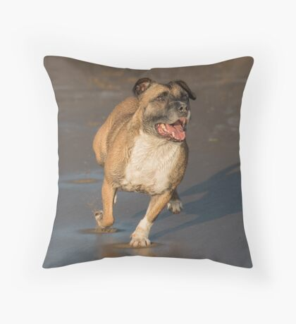 Staffordshire bull terrier running Throw Pillow