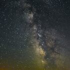 Idaho night sky by Terrell Bird