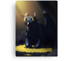 Toothless In A Cave Canvas Print