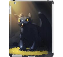 Toothless In A Cave iPad Case/Skin