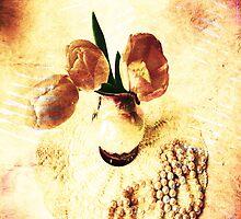 Vintage Tulips by Vitta