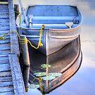 Row Boat Moored at Lonely Lake by Skye Ryan-Evans