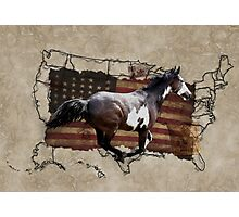 Pony Express Pinto Horse Delivering US Mail Photographic Print