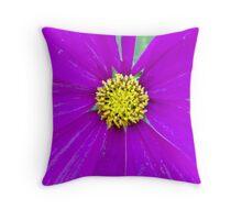Purple Pop Throw Pillow