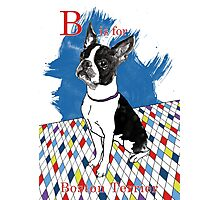 B is for Boston Terrier II Photographic Print