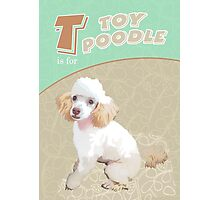 T is for Toy Poodle Photographic Print
