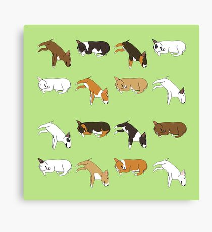 Lazy Bull Terrier - Green Canvas Print