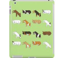 Lazy Bull Terrier - Green iPad Case/Skin