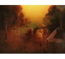 Misty Sundown Photographic Print