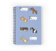 Lazy Bull Terrier - Blue Spiral Notebook
