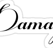 DAMAGED - white vrs. Sticker