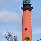 Jupiter Lighthouse by Donna Adamski