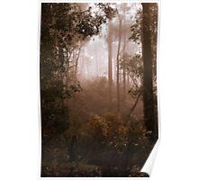 Bushwalking in the Fog Poster