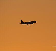 Plane Silhouette by Jonathan Cox