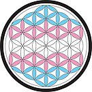tranSacred geometry by chromatosis