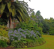 The beautifully manicured gardens, Parliament House Melbourne  VIC Australia by Margaret Morgan (Watkins)