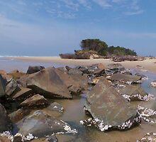 Manning Point - NSW  by Liz Worth