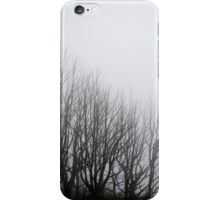 Lake Mountain mist iPhone Case/Skin