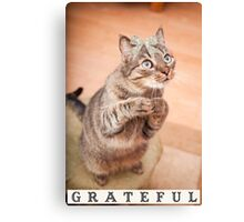 Cute cat with bow,grateful,typography,funny,happy, Canvas Print