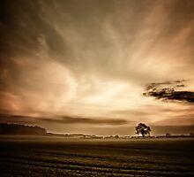 Sepia Sunset  by Vicki Field