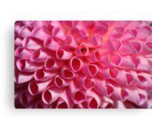 Pink Circle Petals Canvas Print