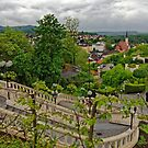 From Melk Abbey 31 by Priscilla Turner