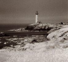 Seaside Lighthouse 2 by Andrew Felton