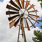 Aussie Windmill by Elaine Teague
